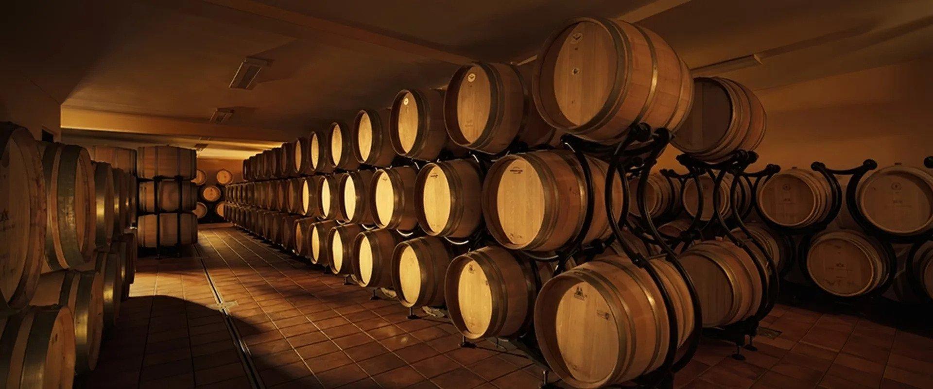 Korcula Peljesac Wine Tour